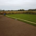 Lawn being laid after preperation 350m2.